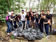 Mangrove-Cleanup