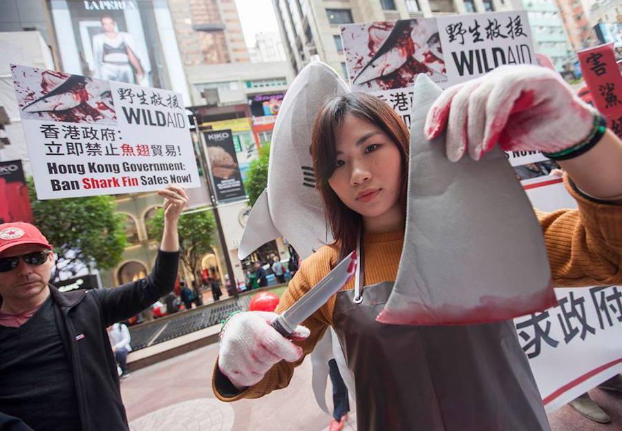 WildAid Hong Kong-Shark Fin Protest