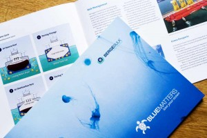 the-blue-matters-brochure
